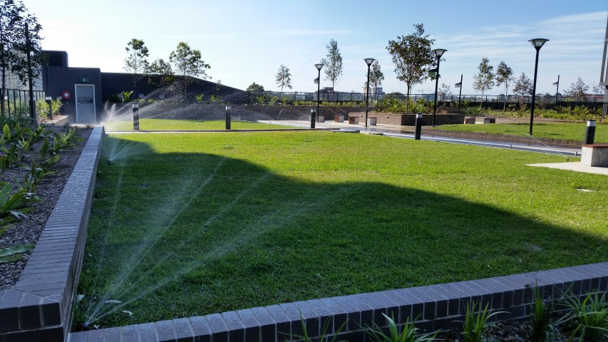 Eastern Suburbs irrigation install